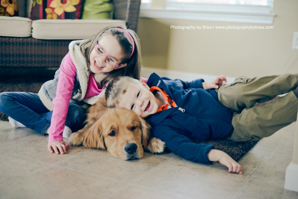 wags-4-kids-dog-photographer