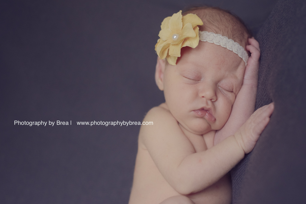 Solon-OH-newborn-photographer-1-19