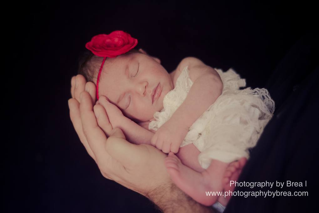 avon-lake-oh-newborn-photographer-1-13