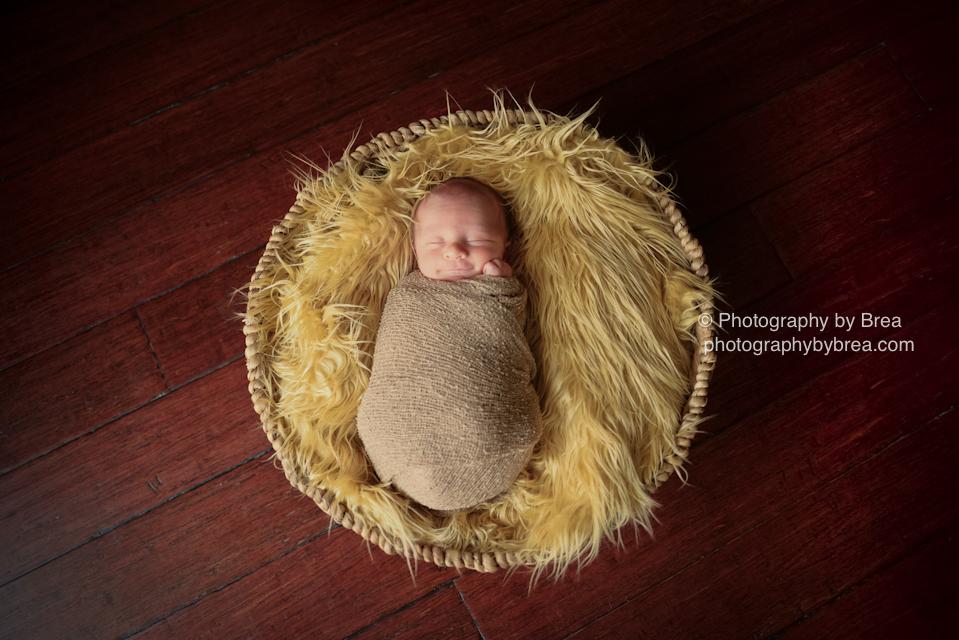avon-lake-oh-newborn-photographer-1-4