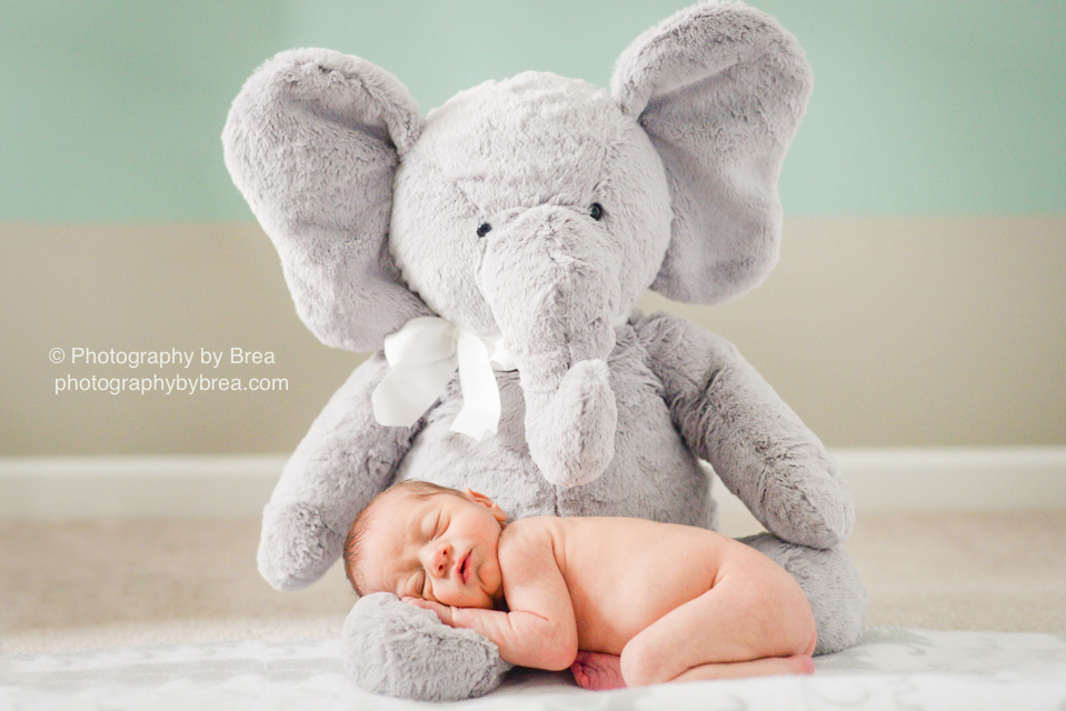 avon-oh-newborn-photographer-1-2