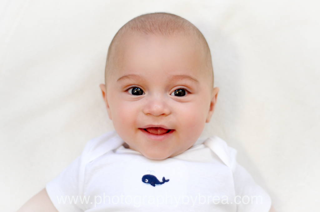 avon-lake-6-month-photographer