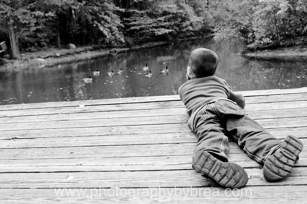 westlake-family-photographer