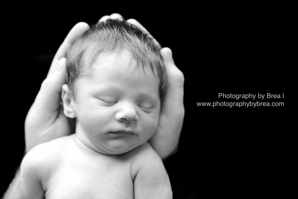 cleveland-newborn-photographer-1-10