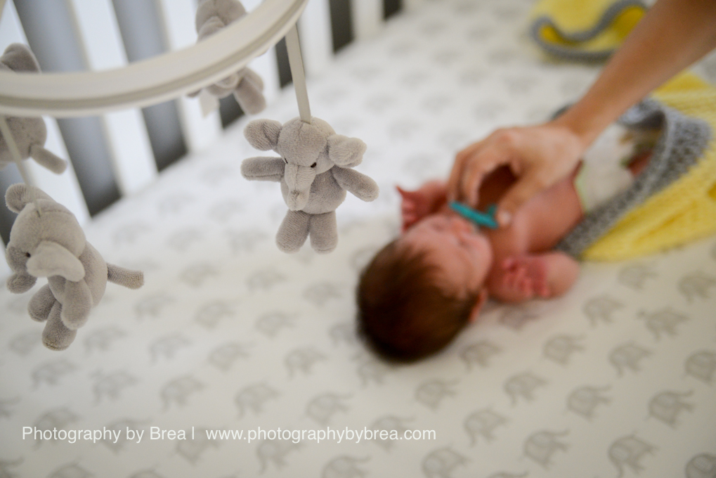 avon-lake-oh-newborn-photographer