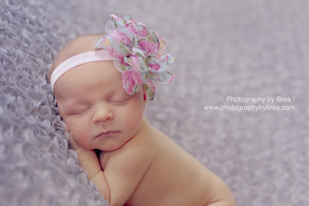 newborn-girl-photographer