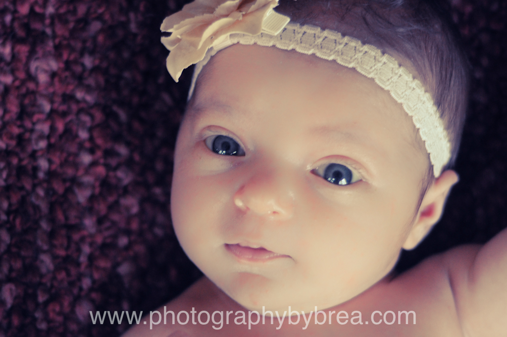 brunswick-newborn-photographer