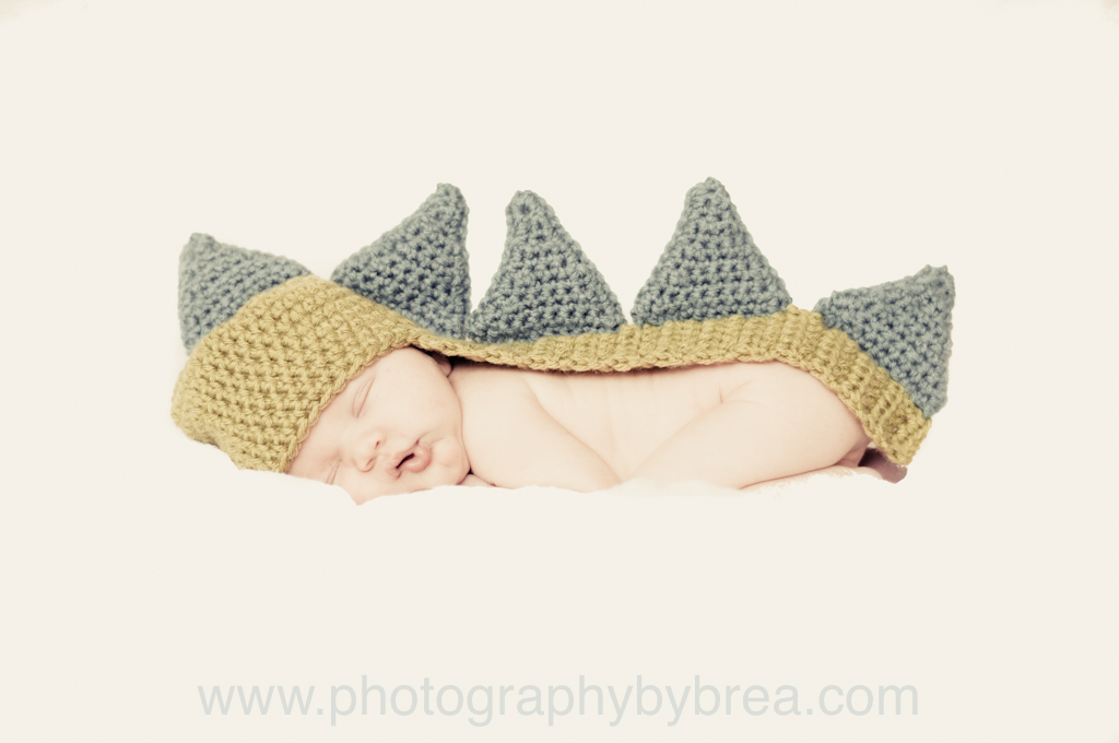 north-olmsted-newborn-photographer