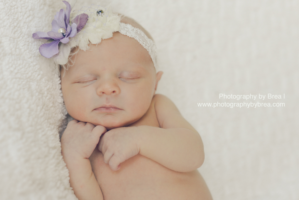 avon-lake-oh-newborn-photographer