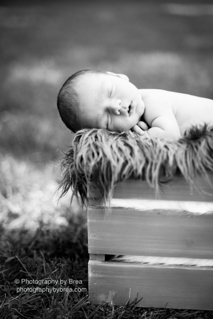 cleveland-oh-newborn-photographer-1-14