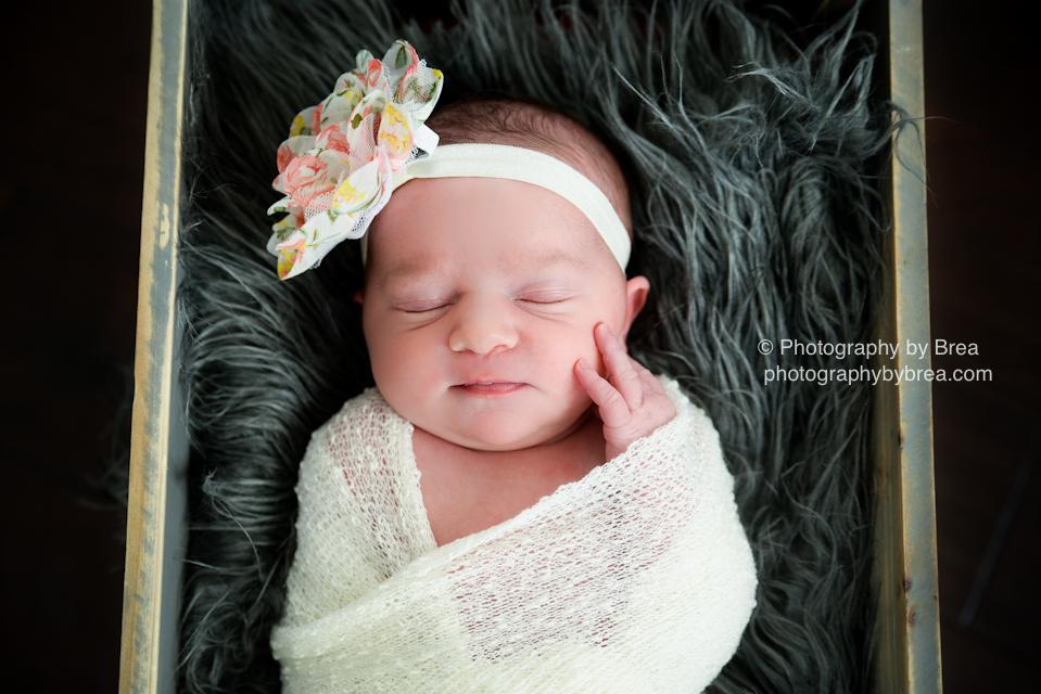 hudson-oh-newborn-photographer-1-3