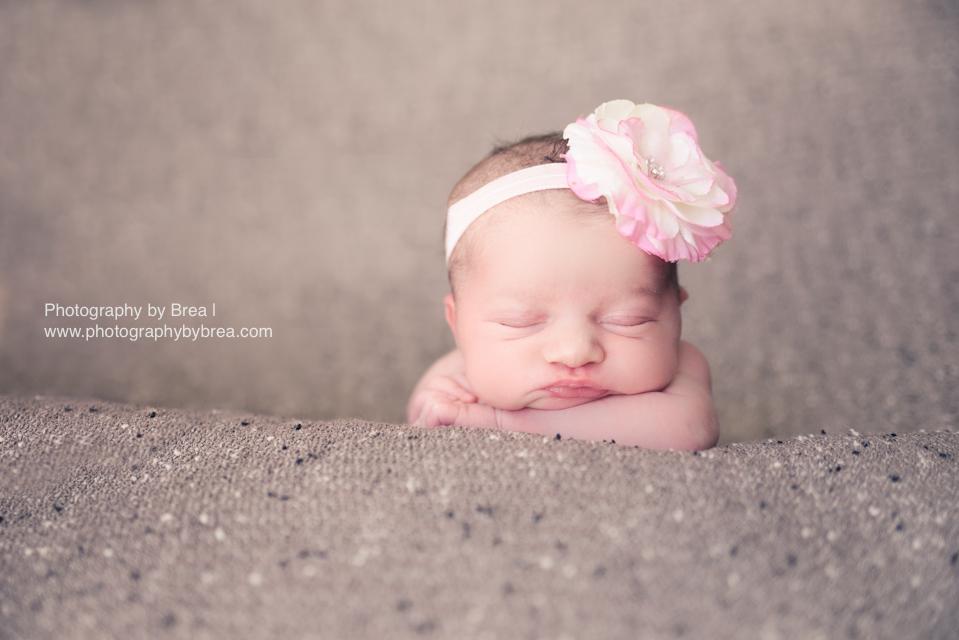 hudson-oh-newborn-photographer-1-8