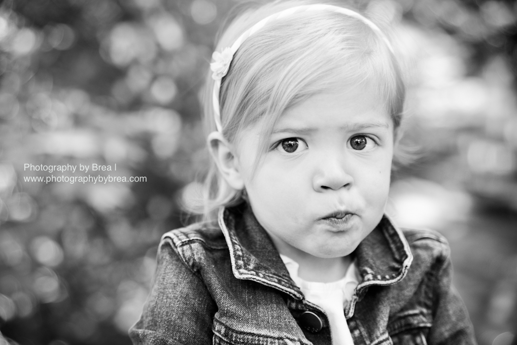olmsted-falls-cleveland-oh-children-family-photographer-1-6