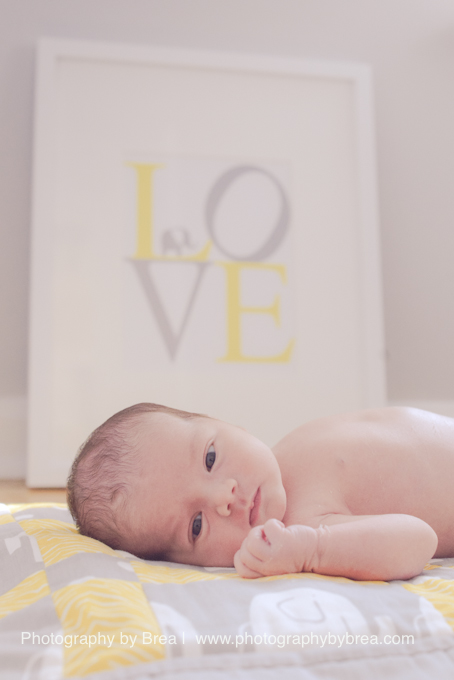 rocky-river-oh-newborn-photographer-1-6