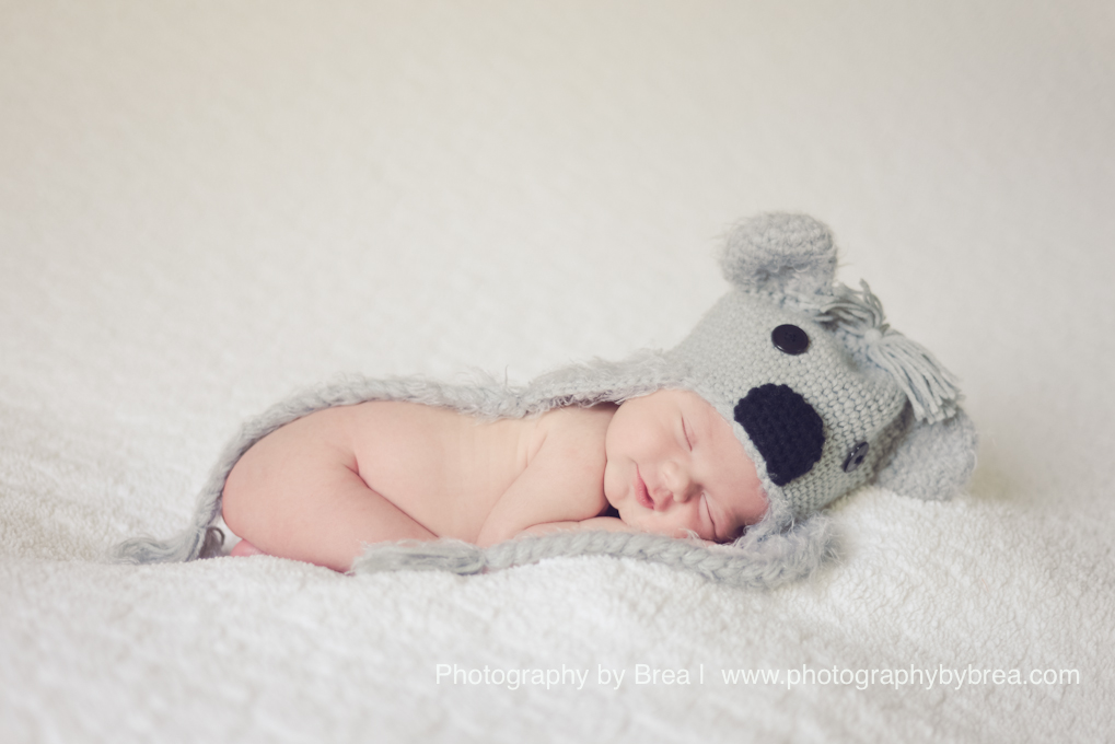 rocky-river-oh-newborn-photographer-1